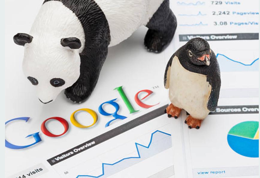 Google không quan tâm bạn là doanh nghiệp mới thành lập hay doanh nghiệp cũ